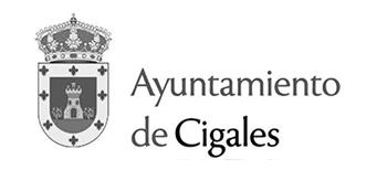 logo_patrocinador_gris_013